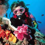Great Barrier Reef - Hydrographic Surveying